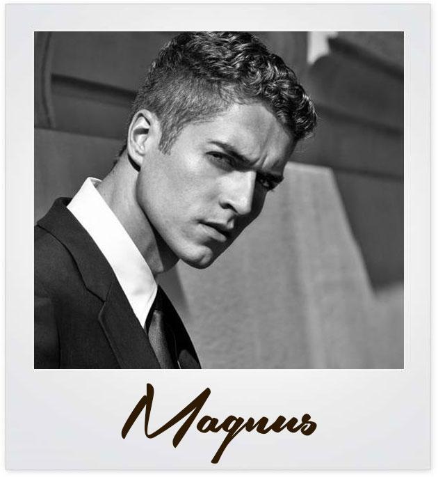 magnus-polaroid